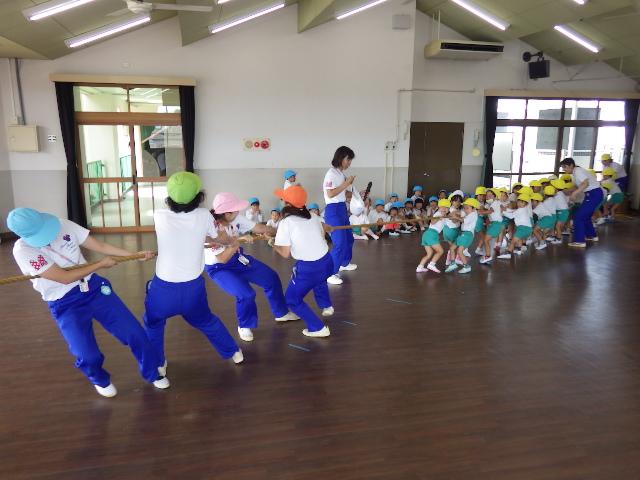f:id:kodakara-kindergarten:20181005113712j:image:w320