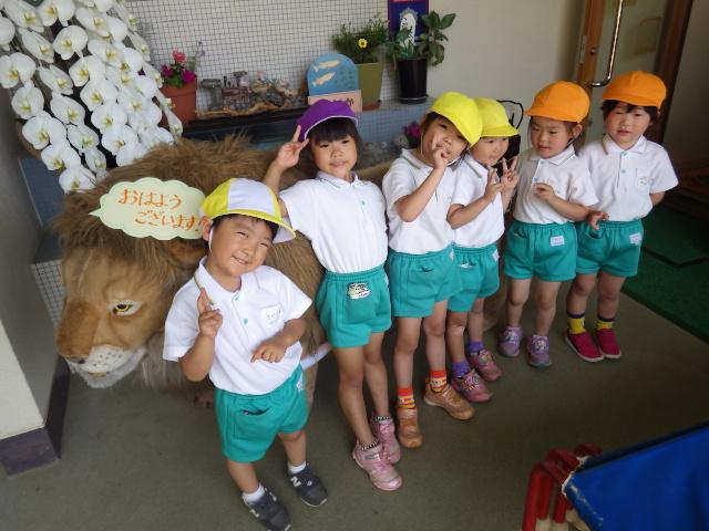 f:id:kodakara-kindergarten:20190527093748j:plain