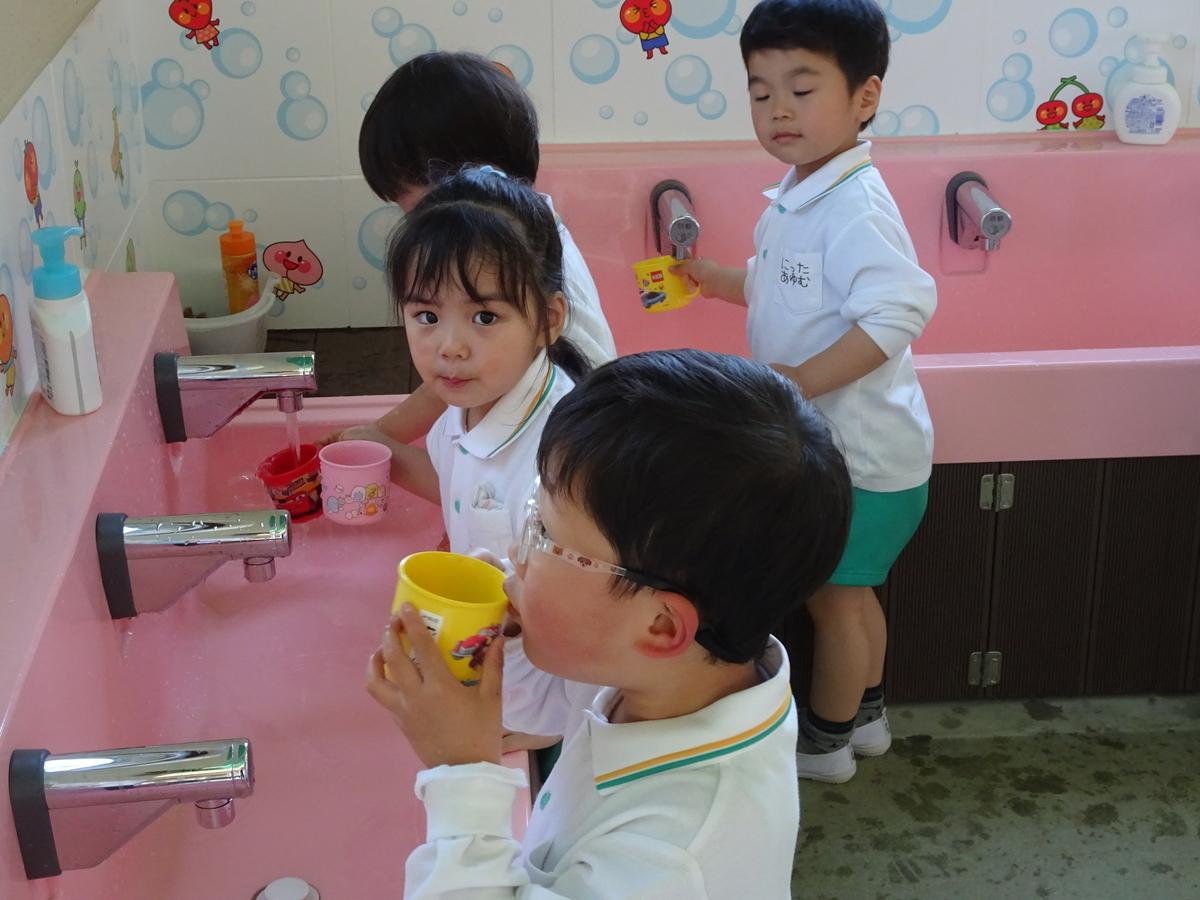 f:id:kodakara-kindergarten:20210420133827j:plain