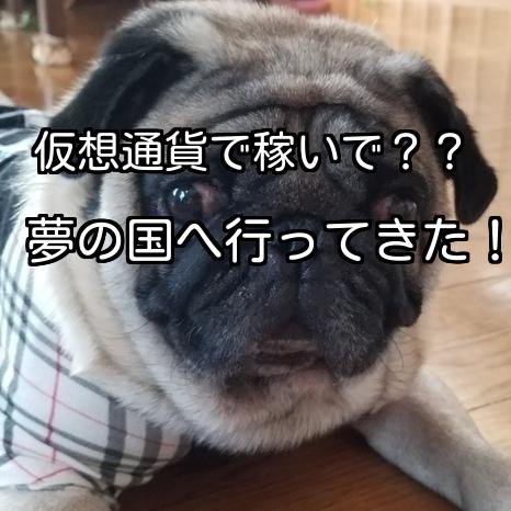 f:id:kodaku3-coin:20171015225258j:plain