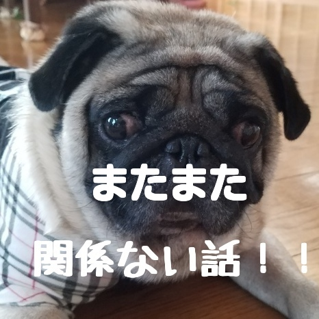 f:id:kodaku3-coin:20171020085212j:plain