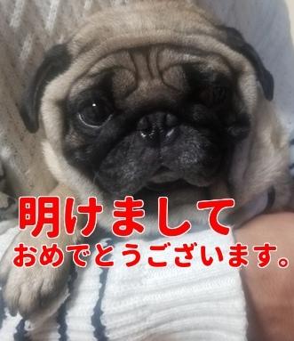 f:id:kodaku3-coin:20180103161947j:plain