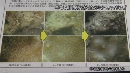f:id:kodomo-hou21:20171115200135j:image:left