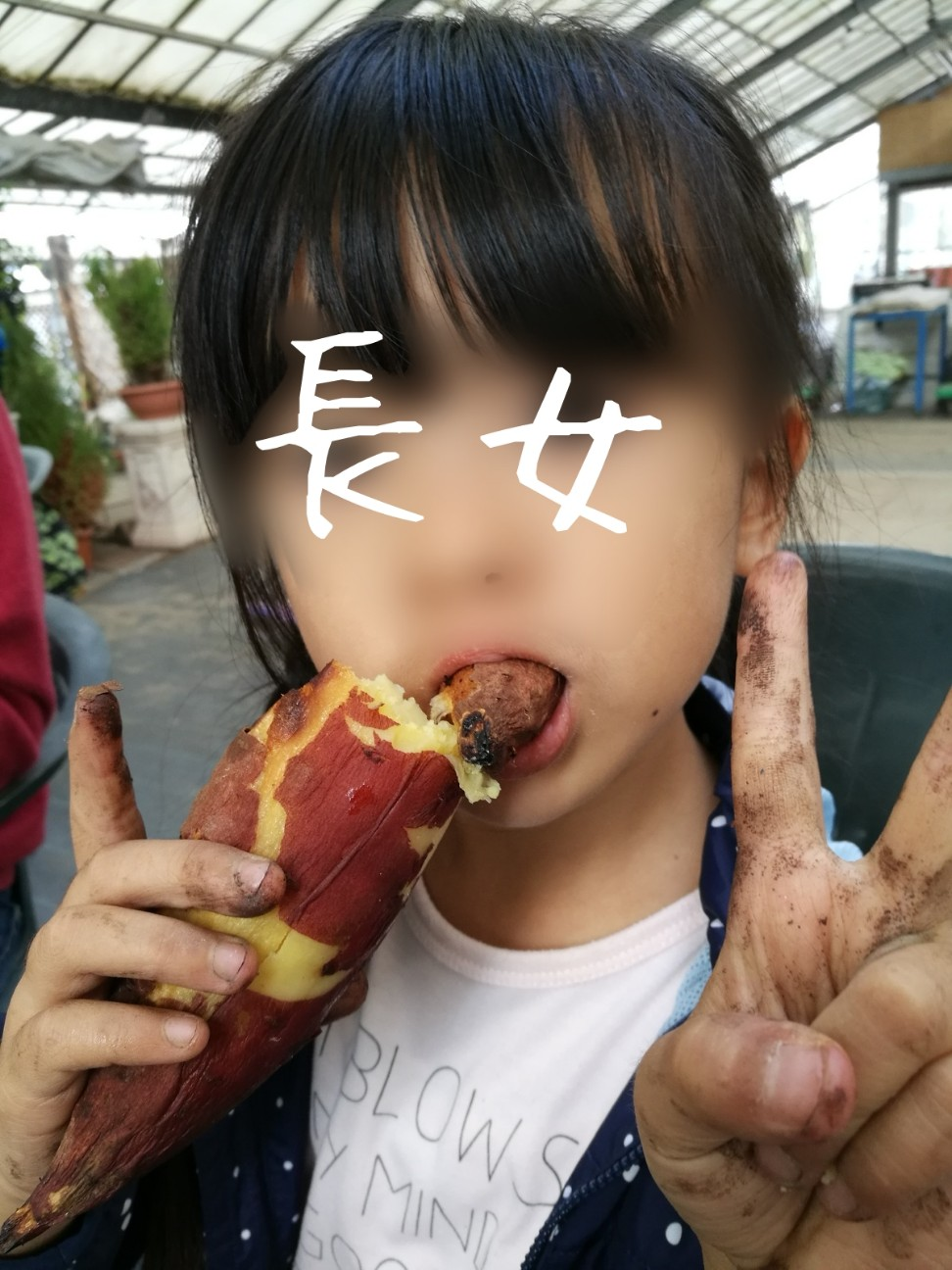 f:id:kodomo-to-dokoiko:20171106140249j:image