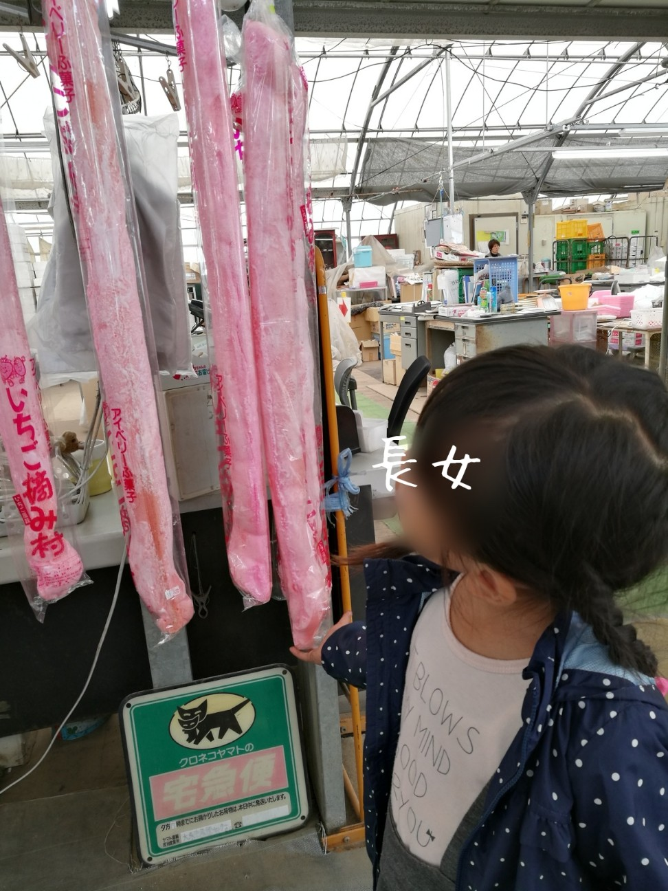 f:id:kodomo-to-dokoiko:20171106140349j:image