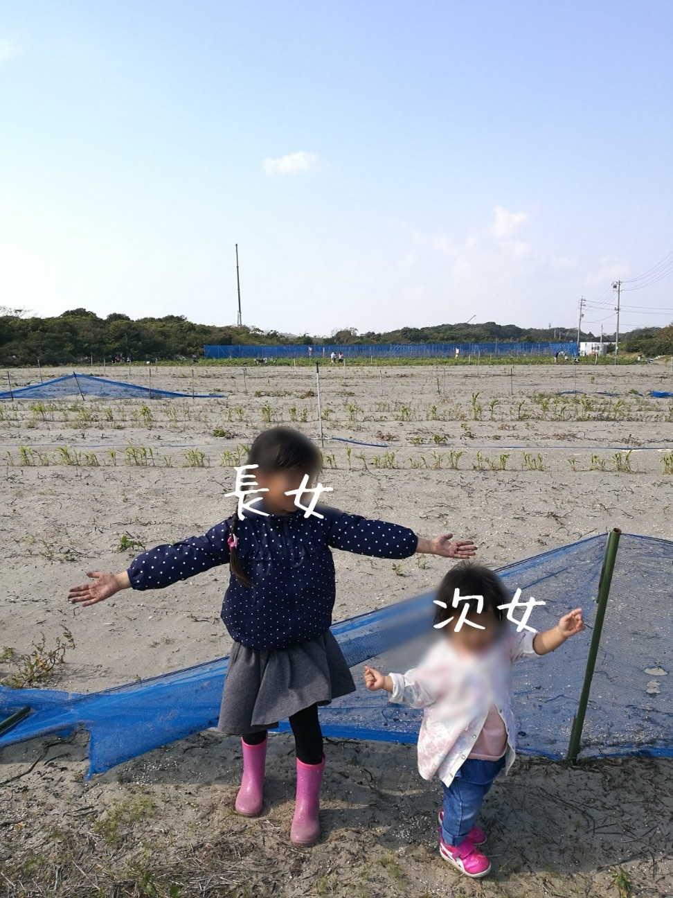 f:id:kodomo-to-dokoiko:20171106234638j:image
