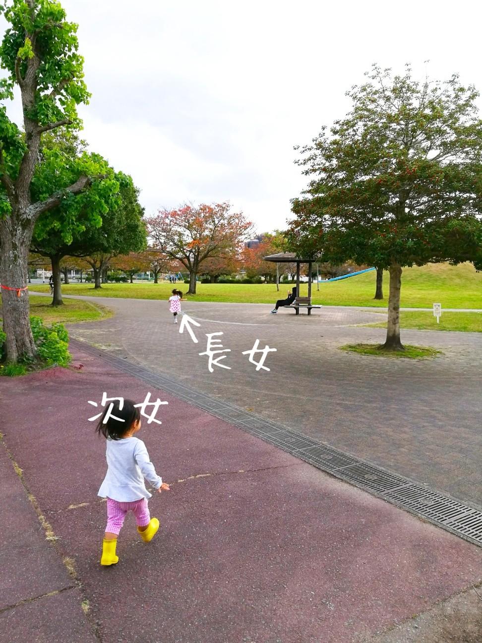 f:id:kodomo-to-dokoiko:20171114101312j:image