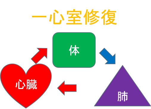 f:id:kodomokokoro:20200616105503p:plain