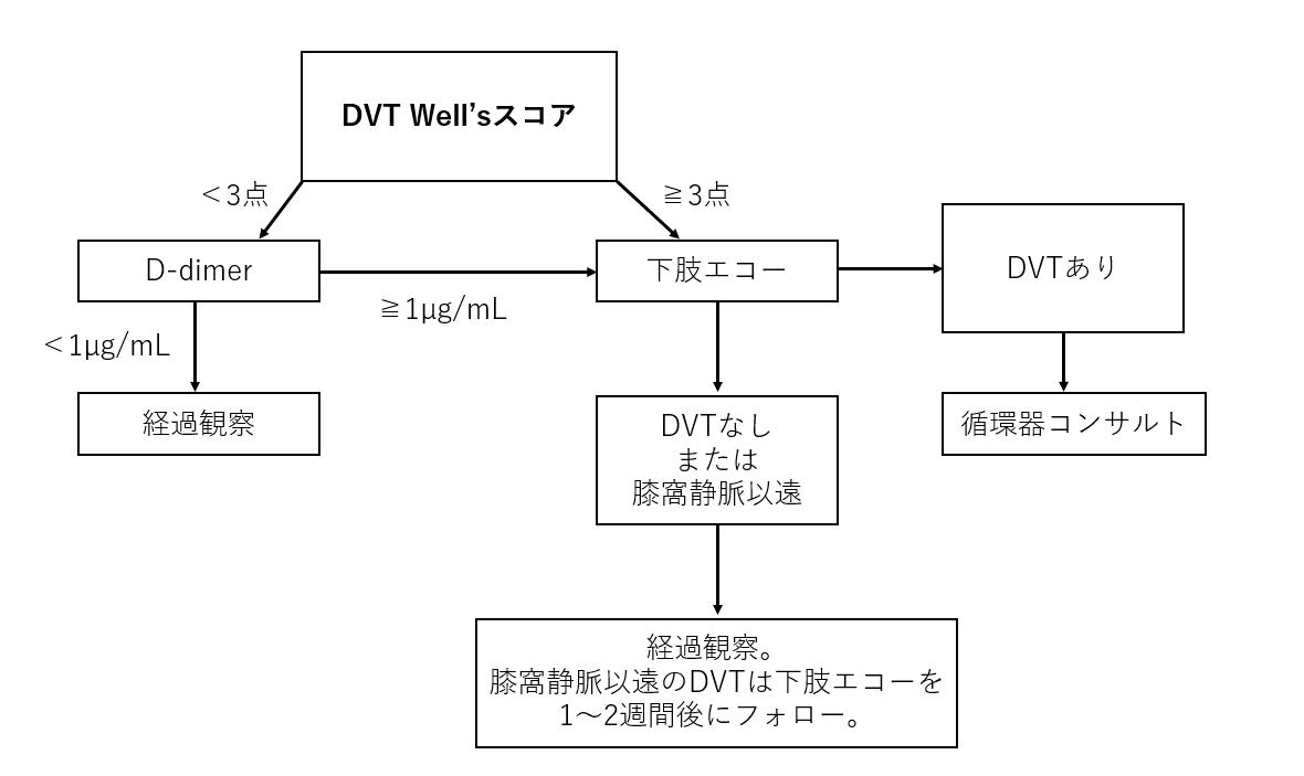 f:id:kodomonotsukai:20210916145009p:plain