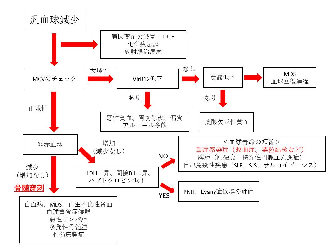f:id:kodomonotsukai:20211002205417p:plain