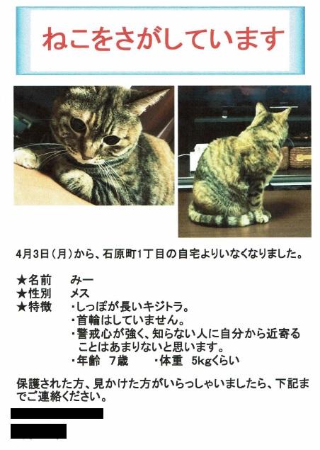 f:id:koedo-animal:20180512164952j:plain