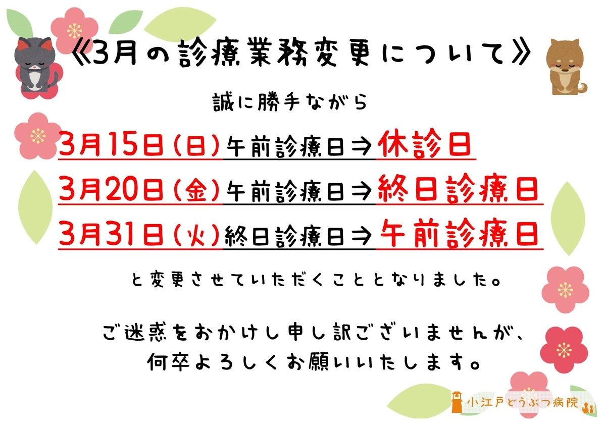 f:id:koedo-animal:20200222151551j:plain