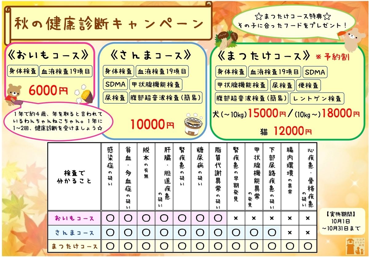 f:id:koedo-animal:20200929175940j:plain