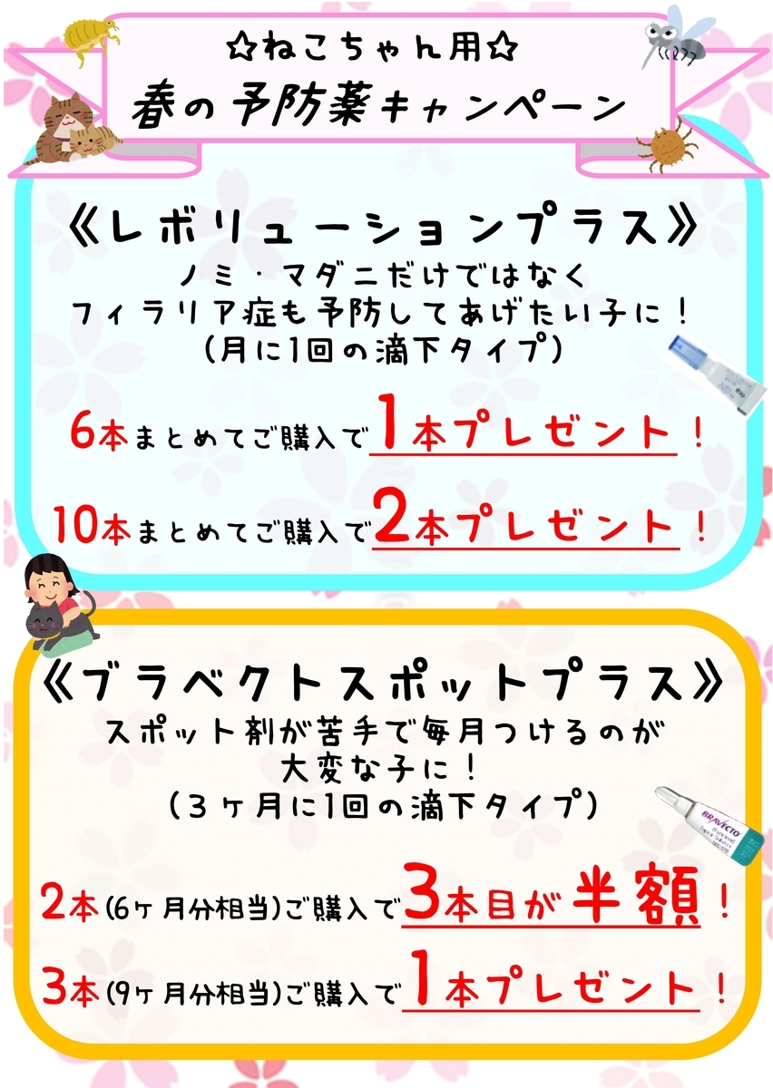 f:id:koedo-animal:20210301104139j:plain