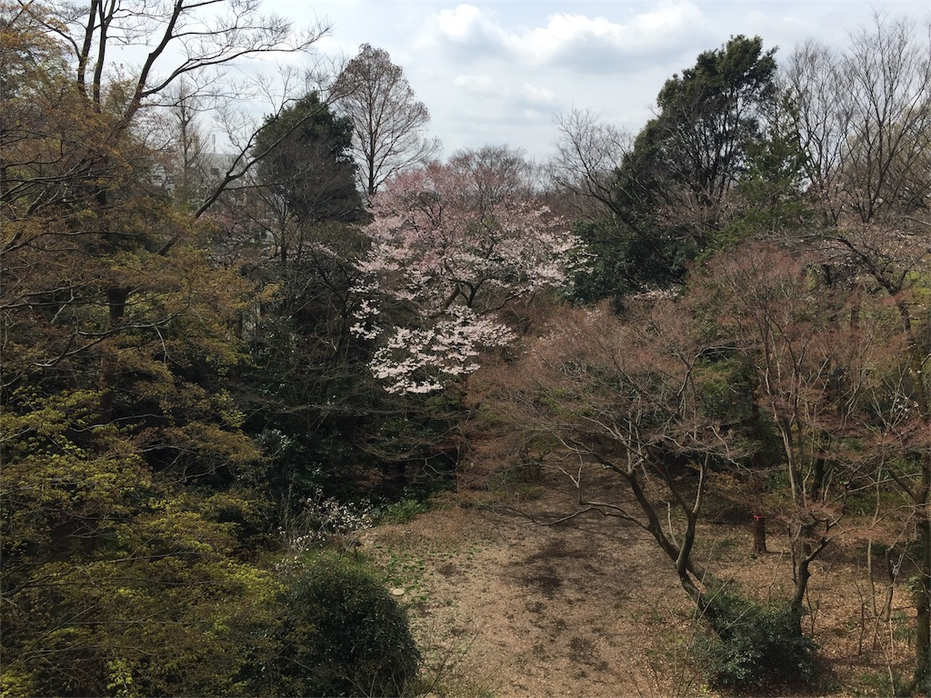 f:id:kofunmeguri:20170402183637j:image