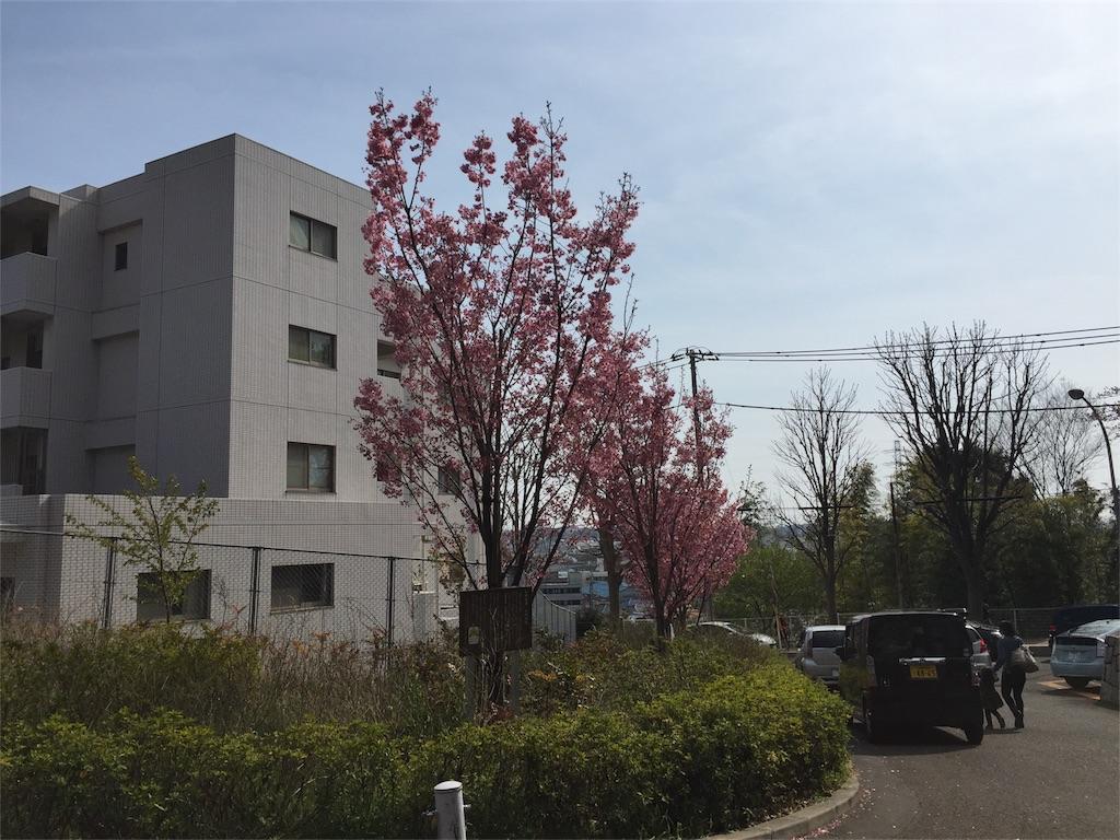 f:id:kofunmeguri:20170405235749j:image