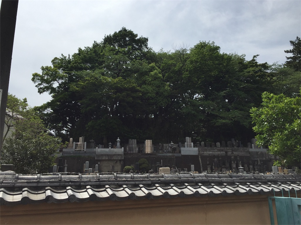 f:id:kofunmeguri:20170503193516j:image