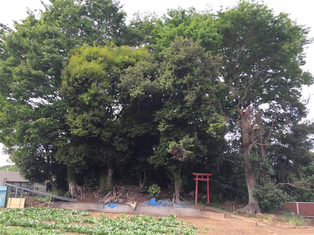 f:id:kofunmeguri:20170503213334j:image