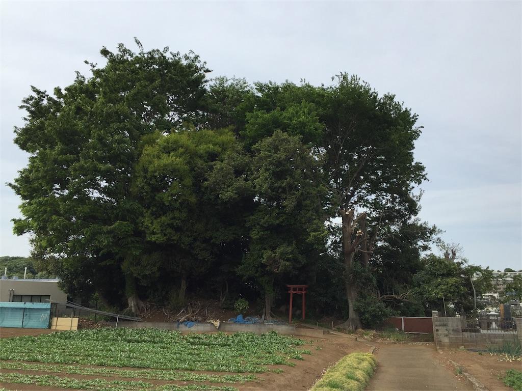 f:id:kofunmeguri:20170503213525j:image