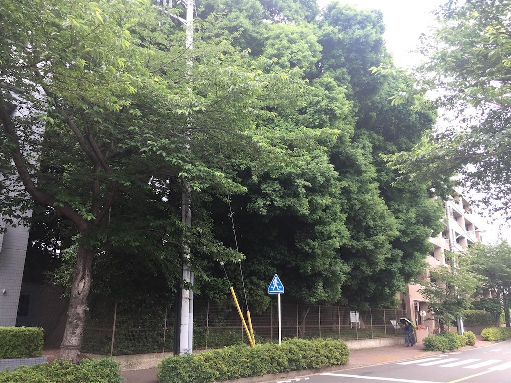 f:id:kofunmeguri:20170527175518j:image