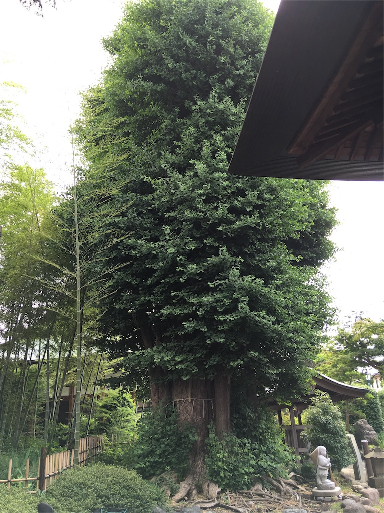 f:id:kofunmeguri:20170624210643j:image