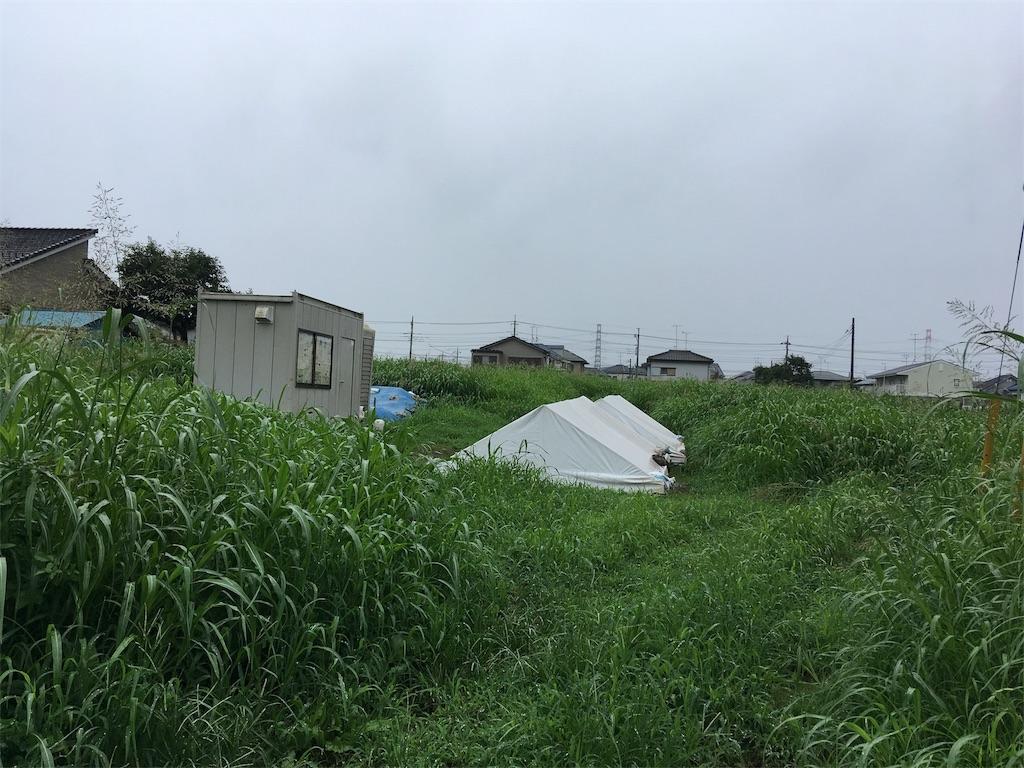 f:id:kofunmeguri:20170816175624j:image