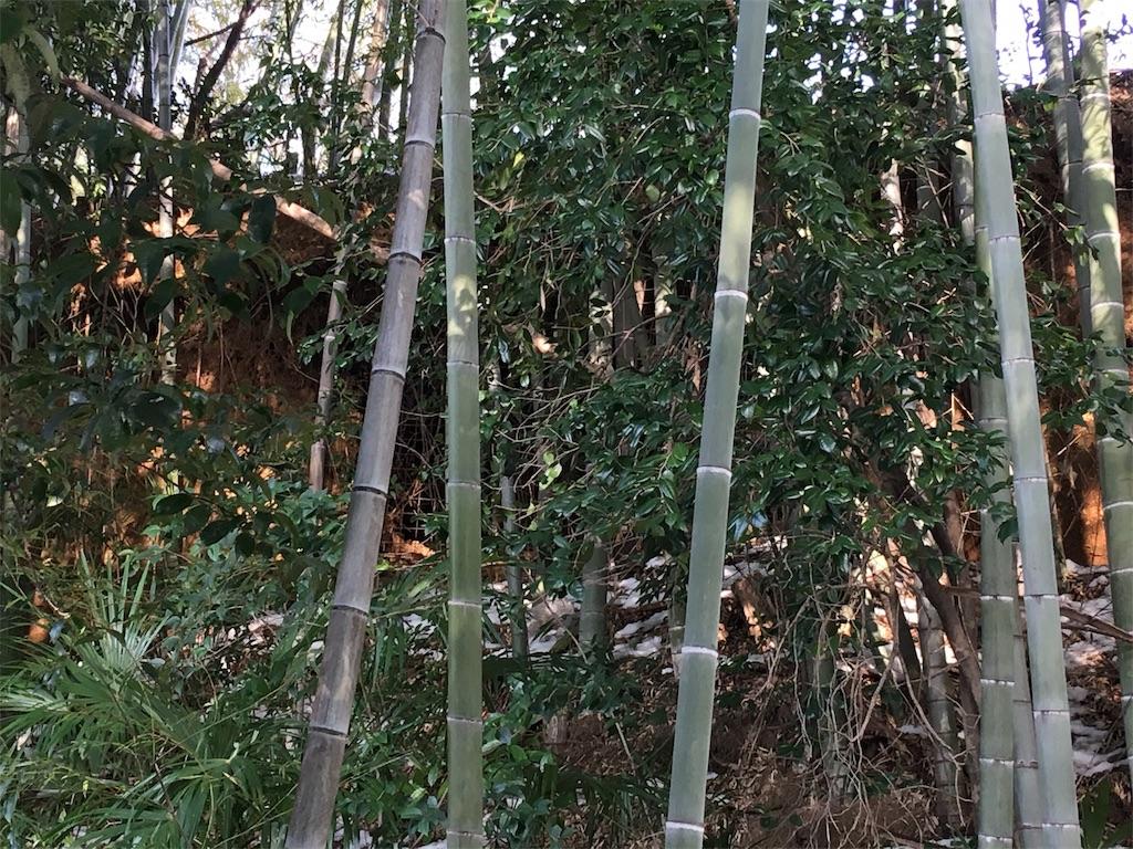 f:id:kofunmeguri:20180129174719j:image