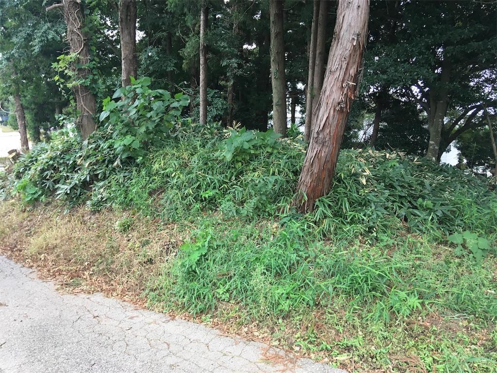 f:id:kofunmeguri:20180911193211j:image