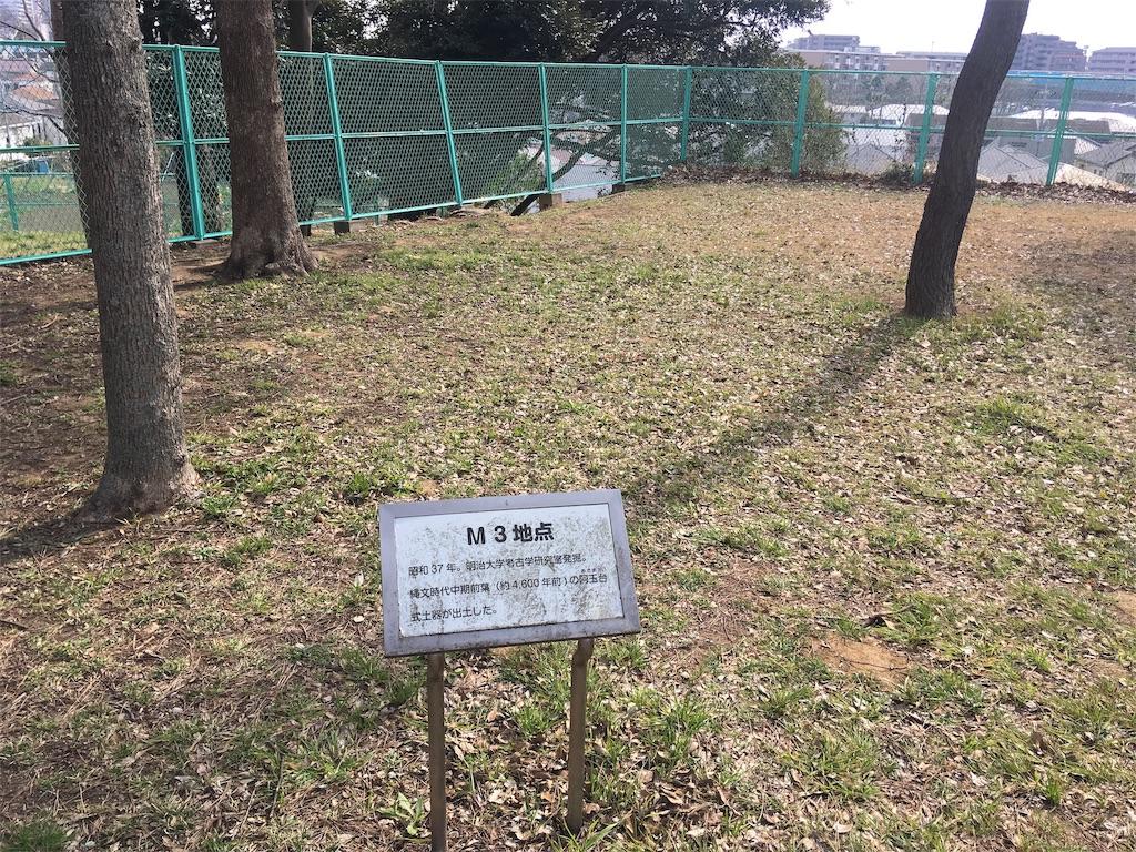 f:id:kofunmeguri:20190224205926j:image