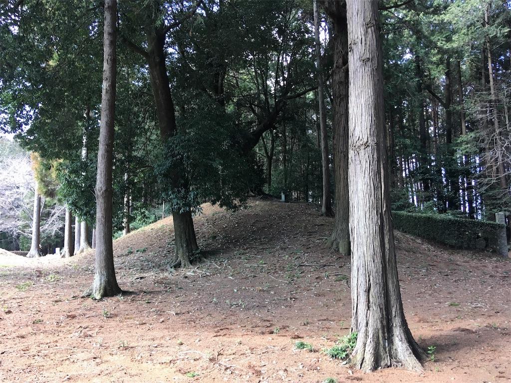 f:id:kofunmeguri:20190325224547j:image