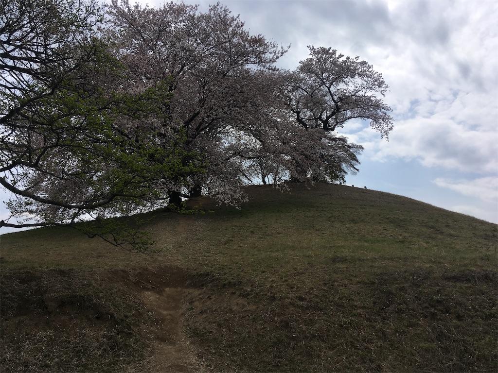 f:id:kofunmeguri:20190414213615j:image