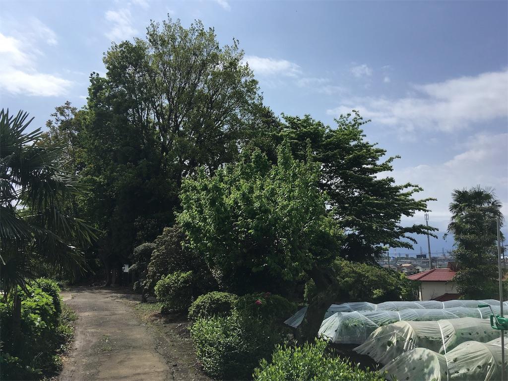f:id:kofunmeguri:20190503065119j:image