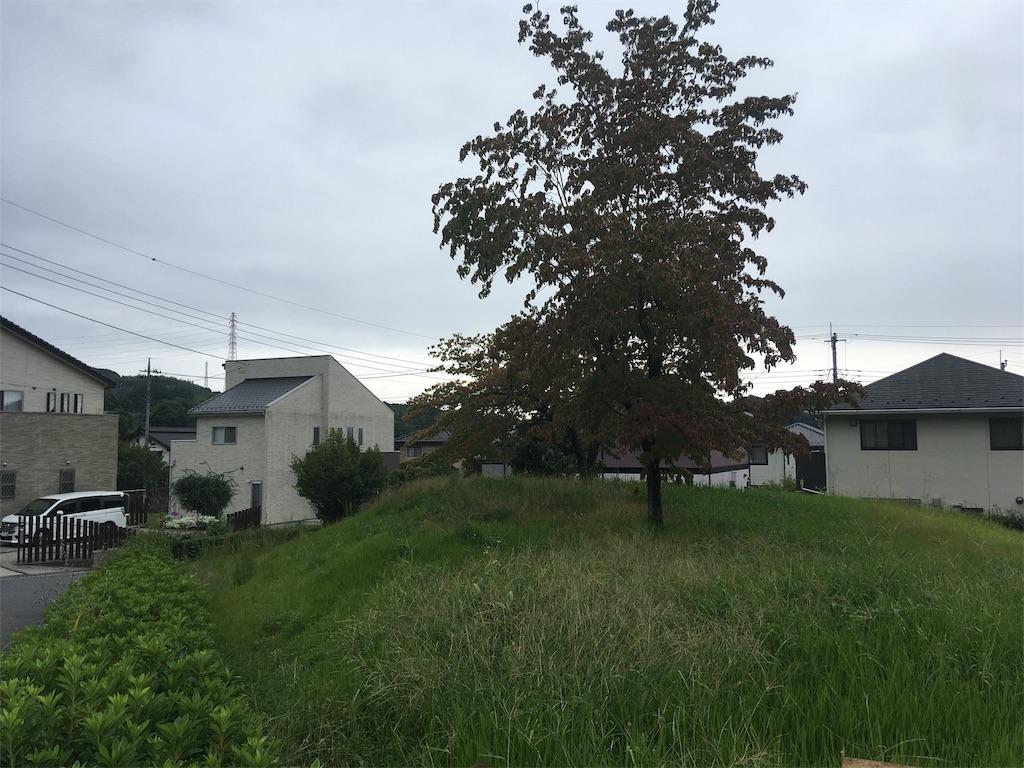 f:id:kofunmeguri:20190520233450j:image