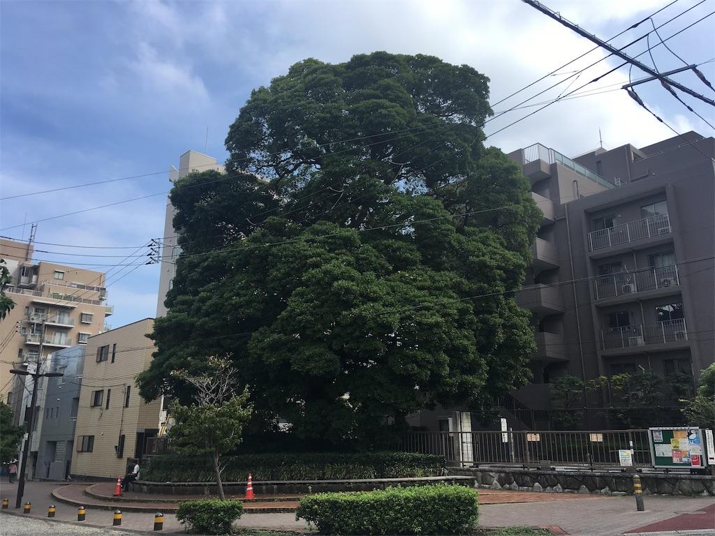 f:id:kofunmeguri:20190906224112j:image