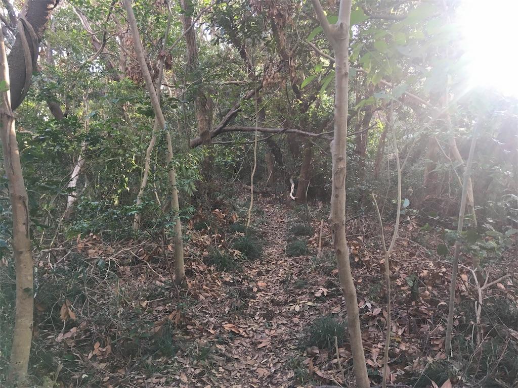 f:id:kofunmeguri:20191201210212j:image
