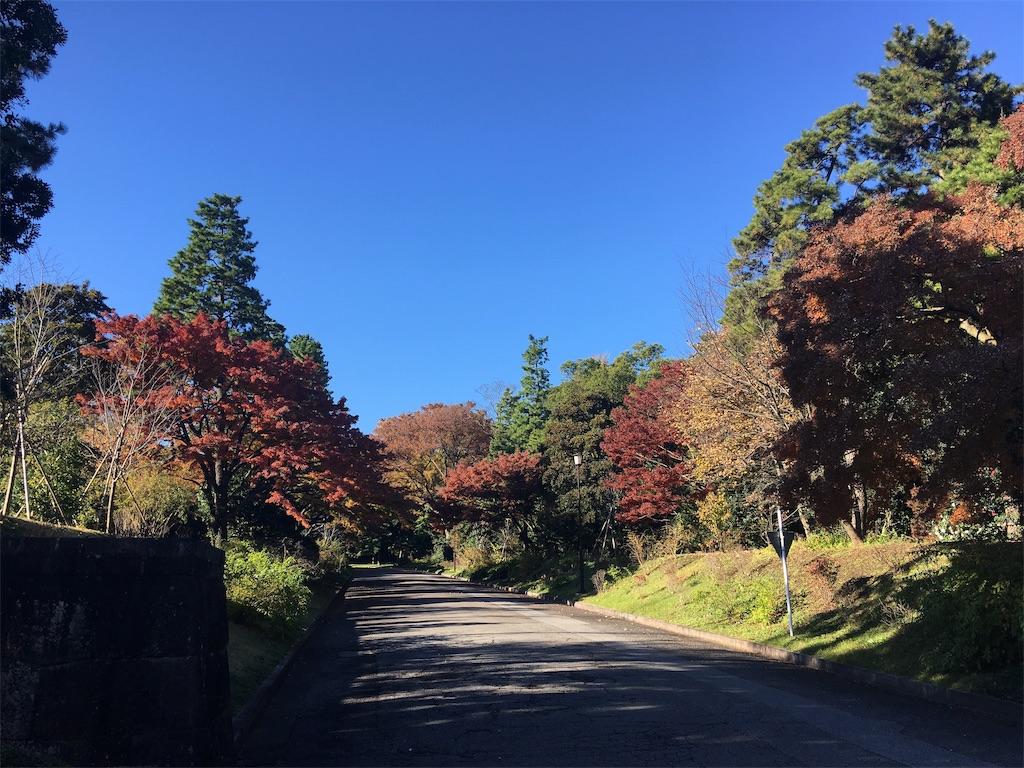 f:id:kofunmeguri:20191204191704j:image