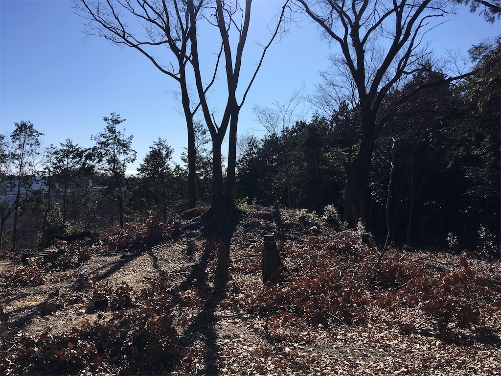 f:id:kofunmeguri:20200102204036j:image