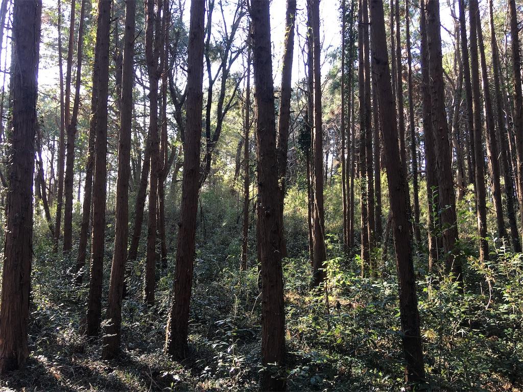 f:id:kofunmeguri:20200113202423j:image