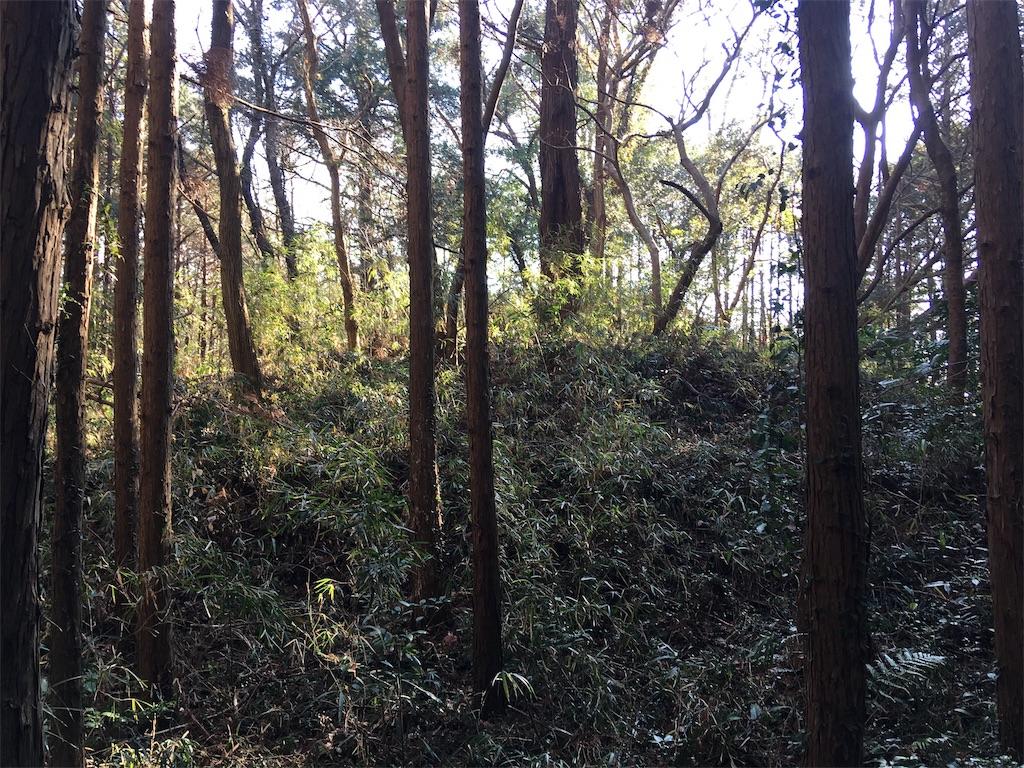 f:id:kofunmeguri:20200113203214j:image
