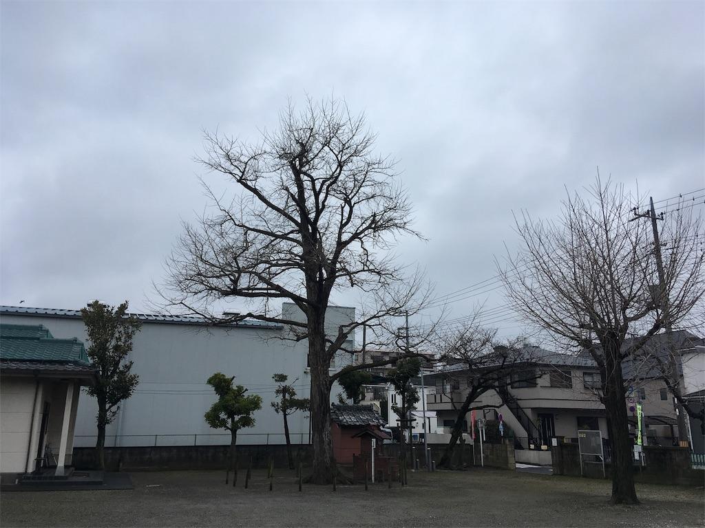 f:id:kofunmeguri:20200308150618j:image