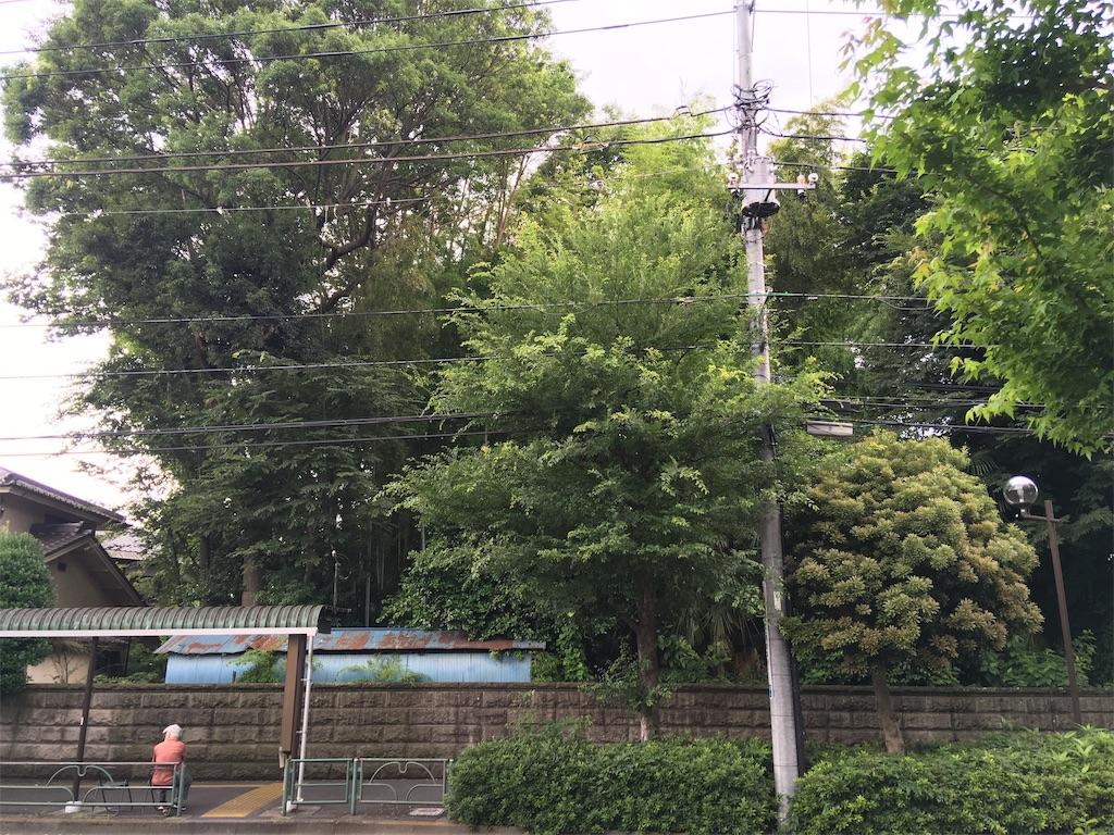 f:id:kofunmeguri:20200623184149j:image