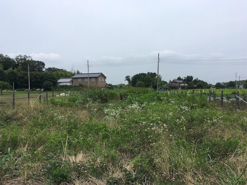 f:id:kofunmeguri:20200627195451j:image