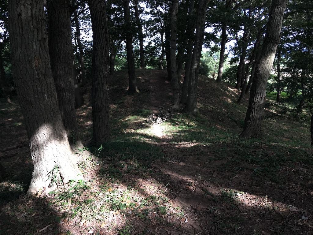 f:id:kofunmeguri:20200830213514j:image