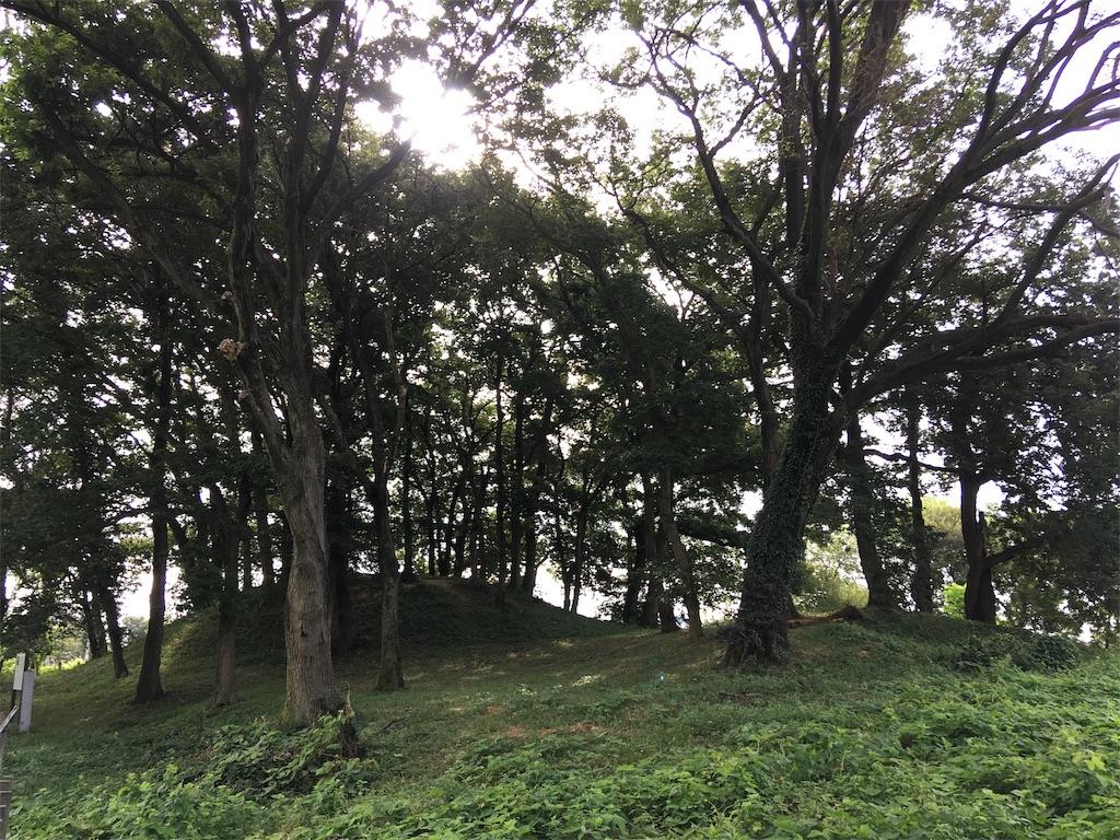 f:id:kofunmeguri:20200830221158j:image