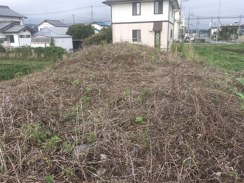 f:id:kofunmeguri:20200913203540j:image