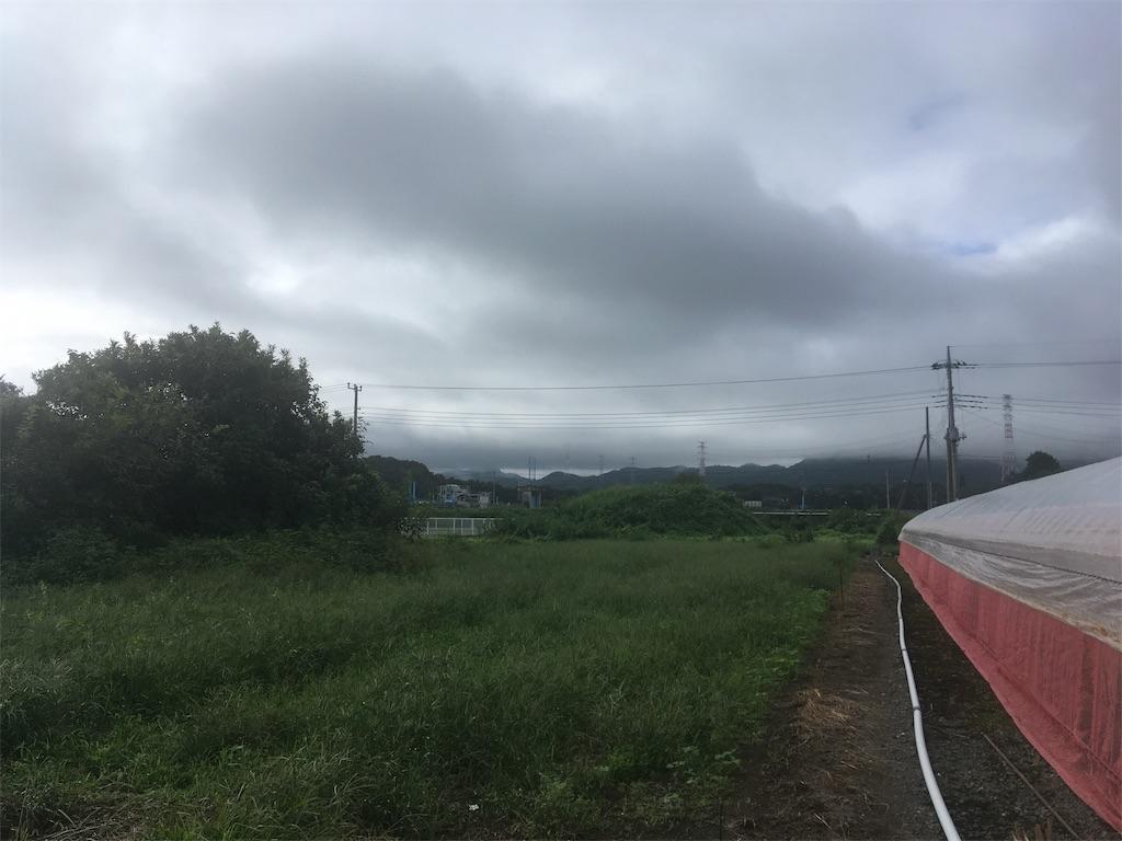 f:id:kofunmeguri:20200914132526j:image
