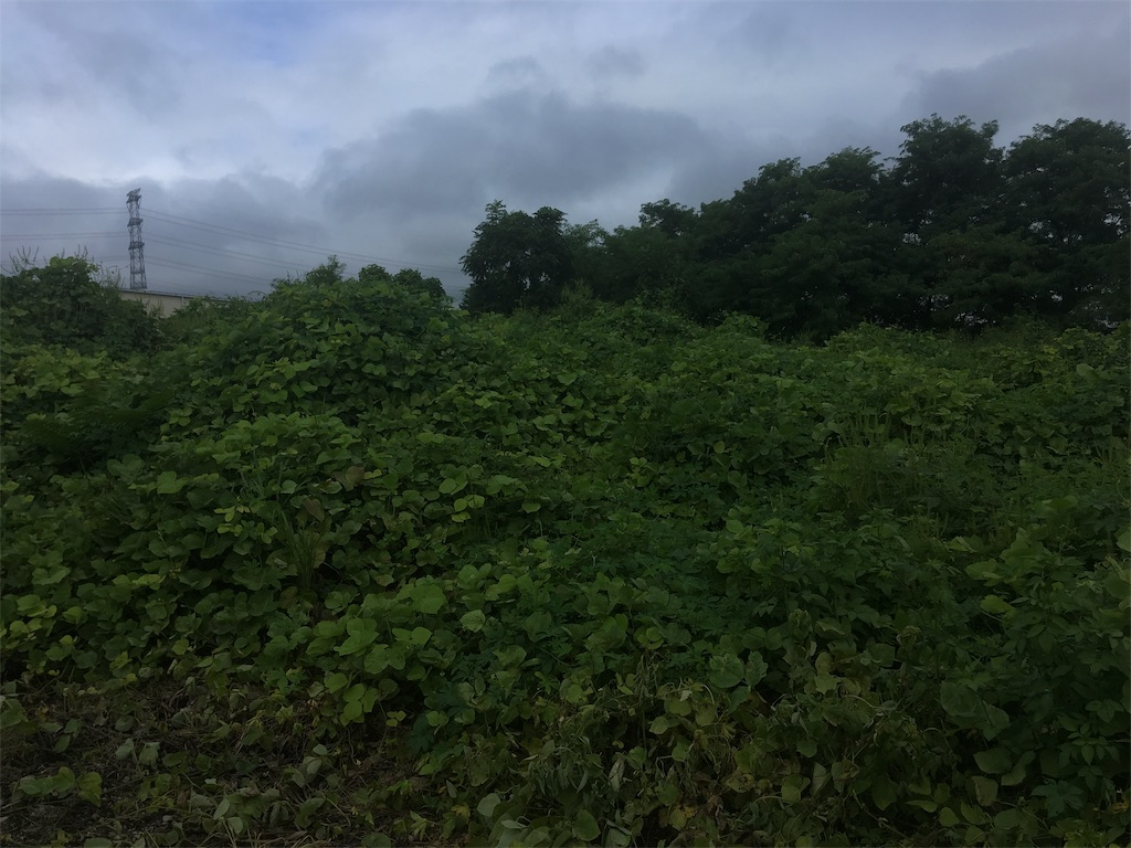 f:id:kofunmeguri:20200915135926j:image