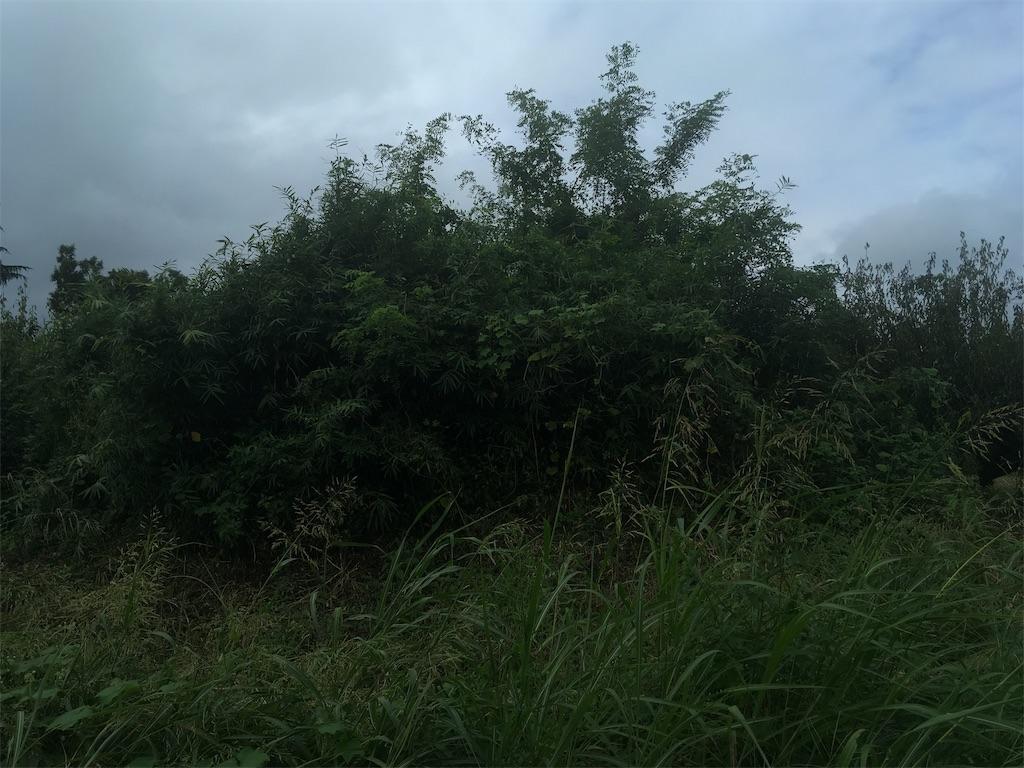 f:id:kofunmeguri:20200915141232j:image
