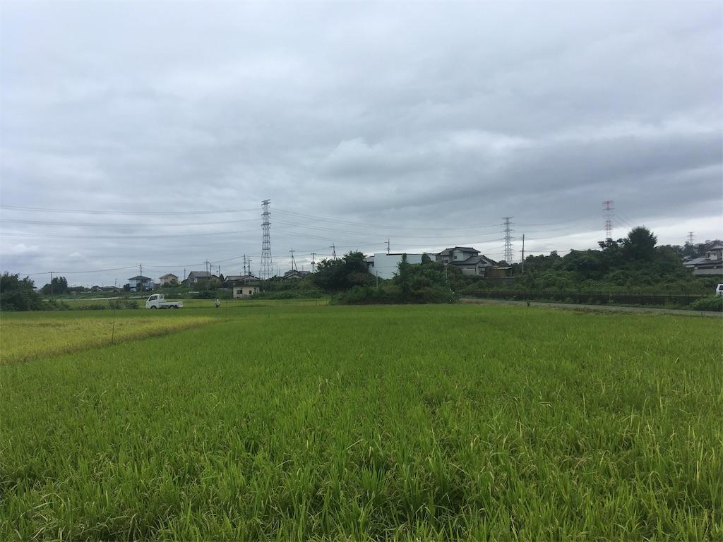 f:id:kofunmeguri:20200916151531j:plain