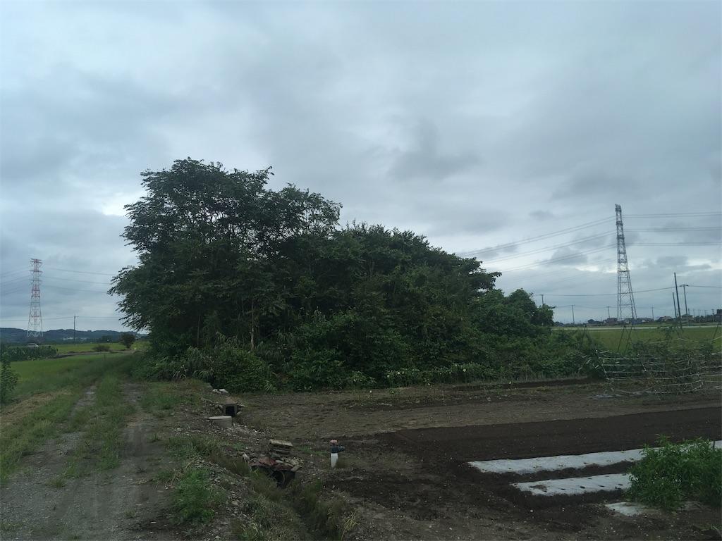f:id:kofunmeguri:20200916171534j:image